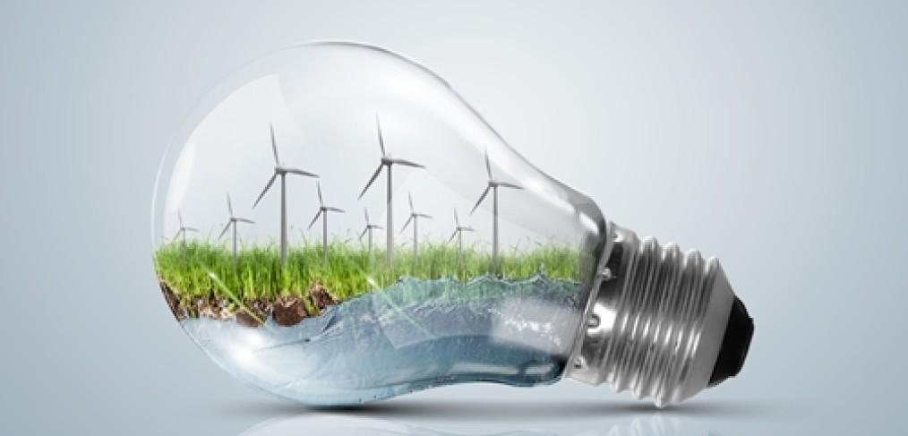 De ce este importanta productia de produse ecologice